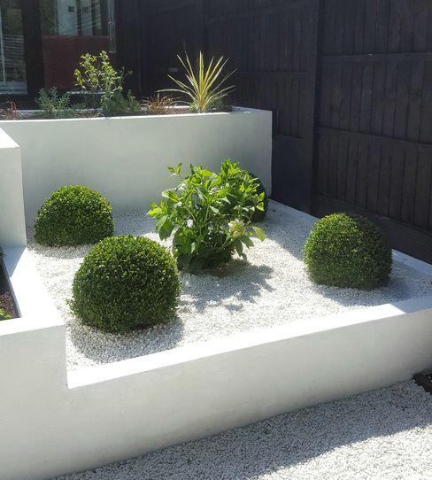 Buxus Spheres and Hydrangea Gardenplan Design Jardin moderne Blanc