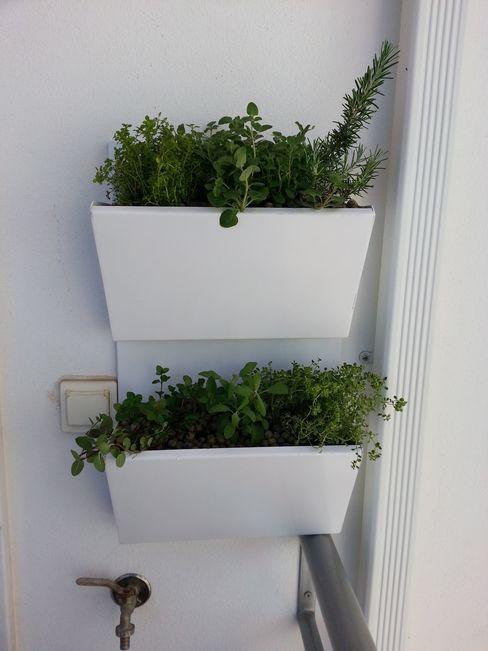 Interior Vivo Balconies, verandas & terraces Plants & flowers Iron/Steel