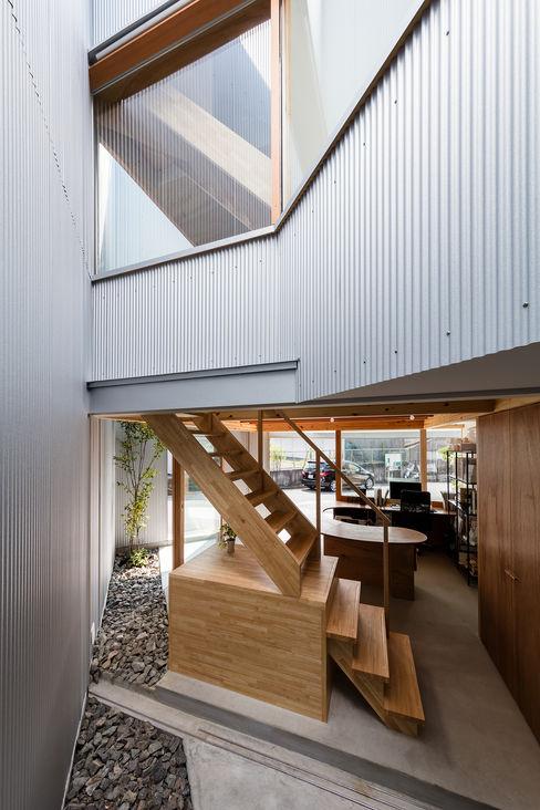 庭から見る玄関スペース 建築設計事務所SAI工房 庭植木&花