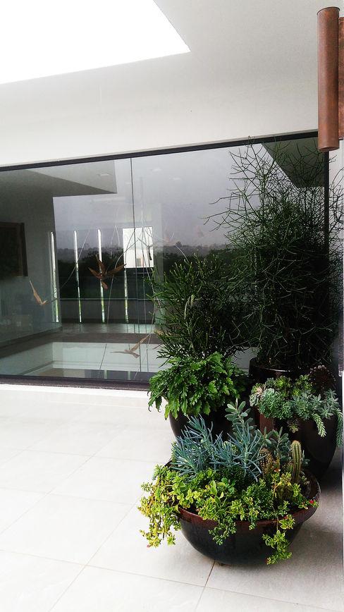 RESIDÊNCIA TM Lá Fora   arquitetura da paisagem Jardins modernos