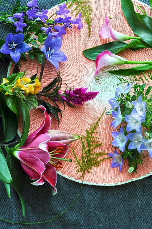 Pflanzenfreude.de Paisajismo de interiores Multicolor
