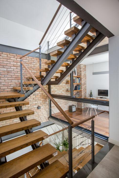 Escada Baumann Arquitetura Corredor, vestíbulo e escadasEscadas Madeira maciça Cinza