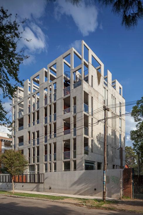 Ciudad y Arquitectura Terrace house Concrete