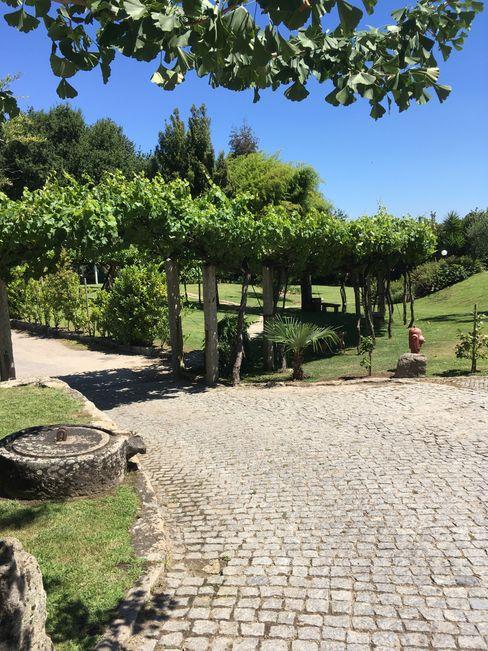 Quinta de Eventos - Avioso Viveiros da Boa Nova, Lda Jardins clássicos