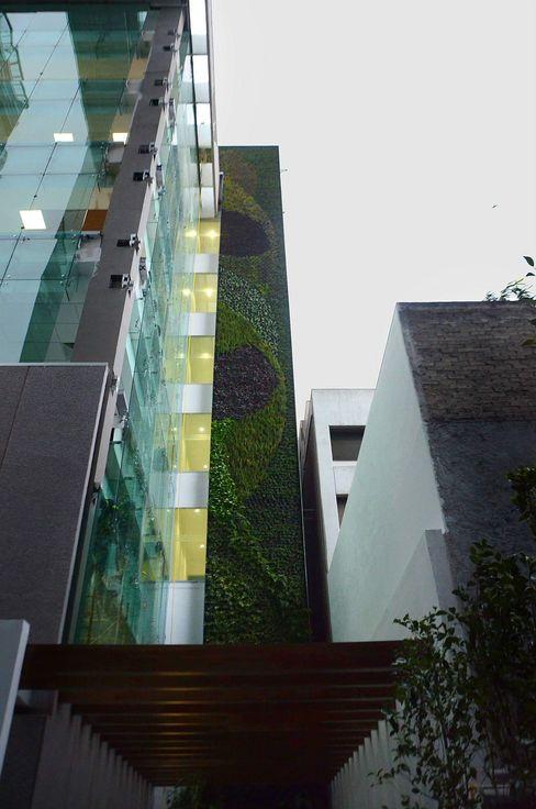 Muros Verdes Designo Arquitectos Edificios de oficinas de estilo ecléctico Bambú