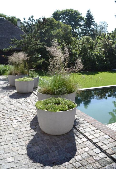 Veld emotie Andrew van Egmond (ontwerp van tuin en landschap) Minimalistische tuinen