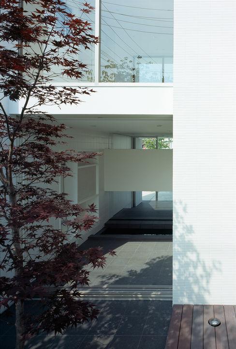 松岡淳建築設計事務所 庭院