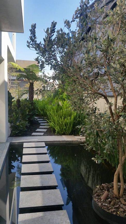 Espejo de agua vista 1 Huatan Jardines modernos
