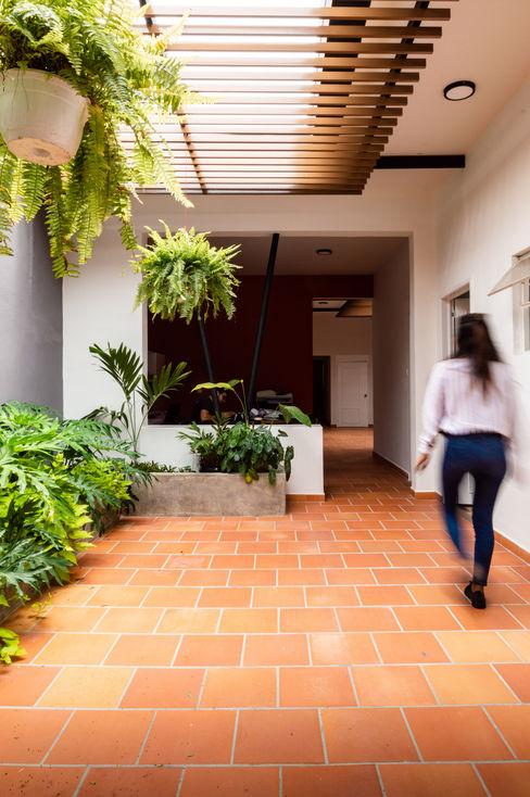 PATIO NO.1 - Una Pérgola que tamiza la luz solar, nuevas plantas, un ambiente interior agradable que llama a la contemplación A. Ordóñez Arquitectura Oficinas y tiendas de estilo moderno