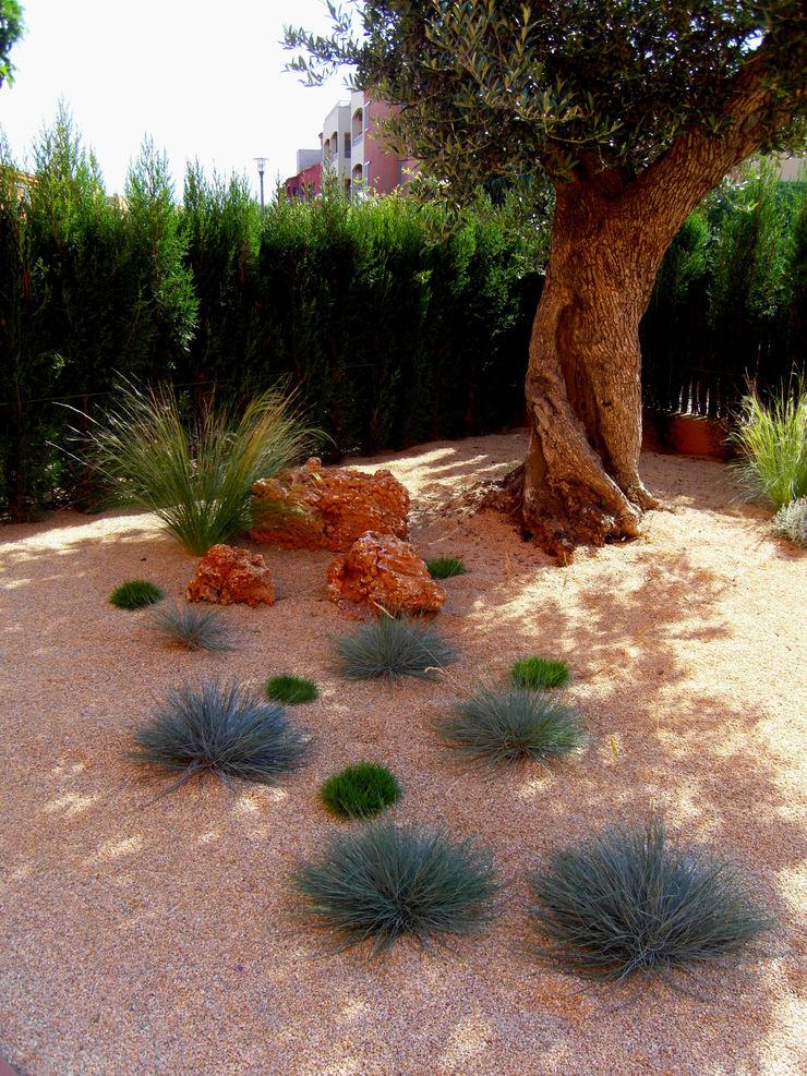 Simbiosi Estudi Mediterraner Garten