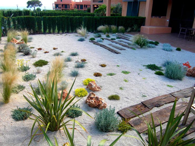 Simbiosi Estudi GartenPflanzen und Blumen