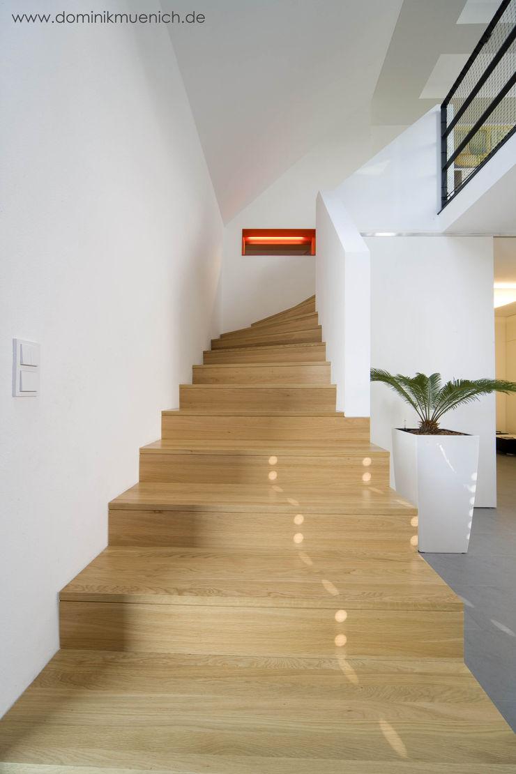 generalsanierung am pflanzgarten 20, regensburg Architekturbüro Ferdinand Weber Moderner Flur, Diele & Treppenhaus
