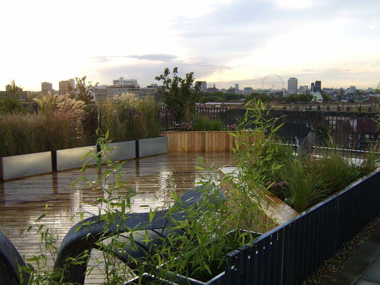 Bermondsey, London Urban Roof Gardens 모던스타일 발코니, 베란다 & 테라스