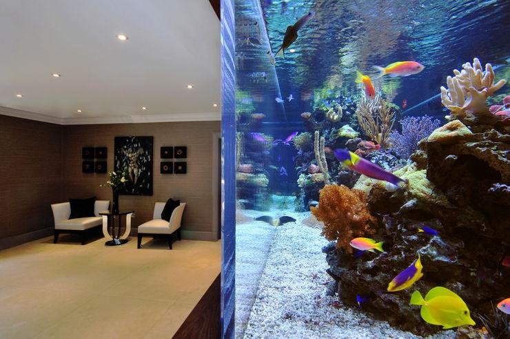 Footballer's Pad Aquarium Aquarium Architecture Modern living room