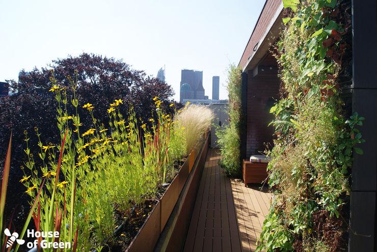 House of Green Balkon, Beranda & Teras Modern