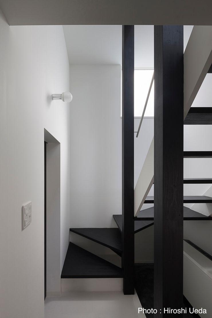1階玄関奧の廻り階段 石川淳建築設計事務所 モダンスタイルの 玄関&廊下&階段