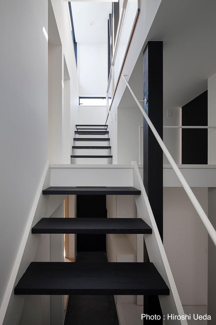 1階から階段見上げ 石川淳建築設計事務所 モダンスタイルの 玄関&廊下&階段