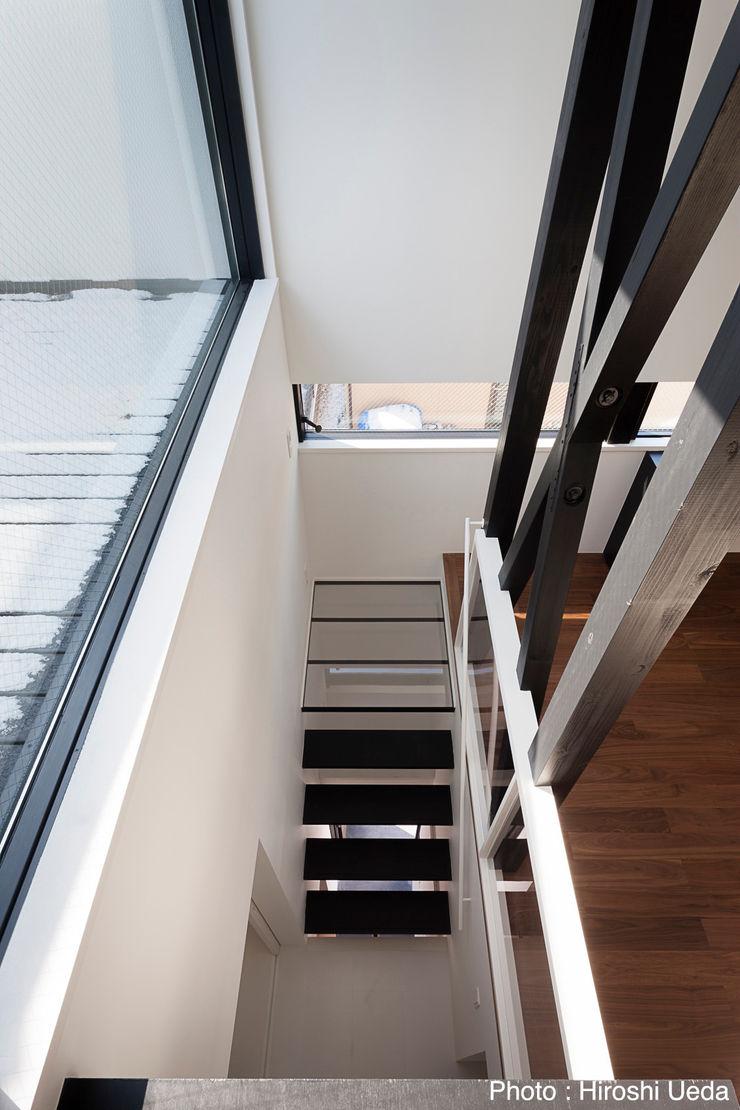 階段見下ろし 石川淳建築設計事務所 モダンスタイルの 玄関&廊下&階段