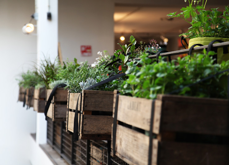 BACSAC® Balconies, verandas & terraces Accessories & decoration
