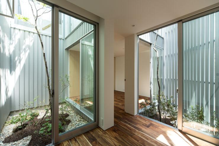 鳳の家 House in Otori arbol モダンな庭
