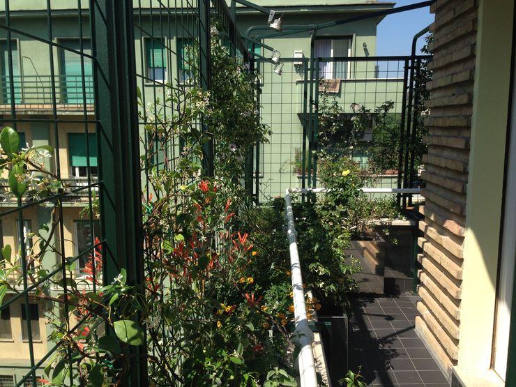 sabigarden Balcones y terrazas de estilo moderno