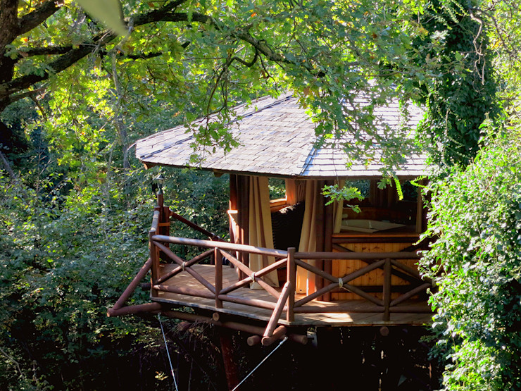 Casa sull'albero Tree Top Builder Case in stile tropicale