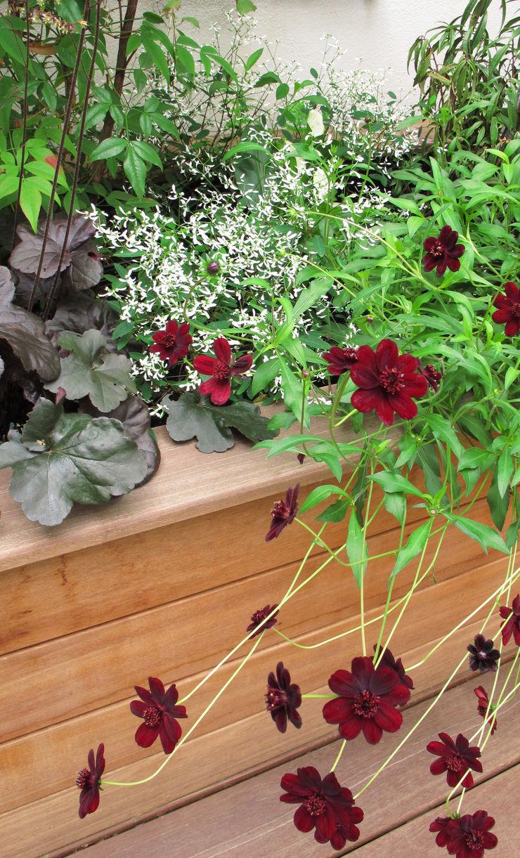 contemporary wooden planter Fenton Roberts Garden Design Moderner Garten