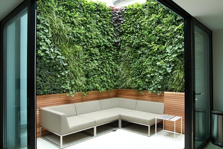 Private Courtyard, London, Living Wall Biotecture Garden Plants & flowers