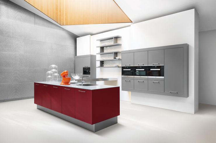 Contemporary Innovative Deisgn fit Kitchens KitchenCabinets & shelves