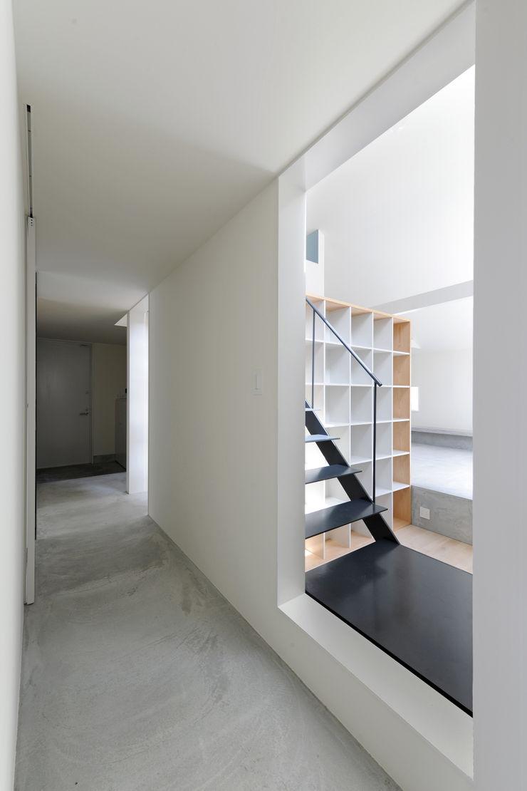 桑名の家 / House in Kuwana 市原忍建築設計事務所 / Shinobu Ichihara Architects モダンスタイルの 玄関&廊下&階段