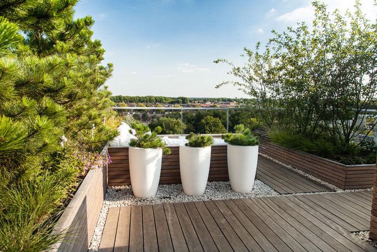 Studio REDD exclusieve tuinen Balcones y terrazas modernos