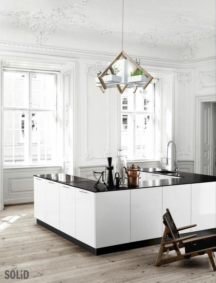 Solid Interior Design HouseholdPlants & accessories
