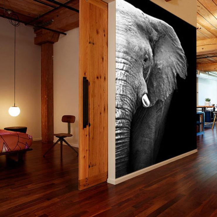 Fotomurales blanco y negro Fotomurales Paredes y suelosDecoración de paredes
