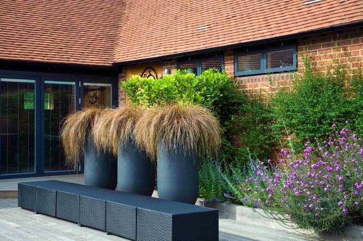 Courtyard pots and furniture Rae Wilkinson Design Ltd Modern garden