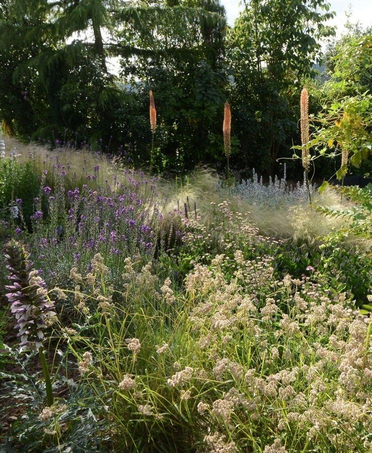 Planting Design Katherine Roper Landscape & Garden Design Country style garden