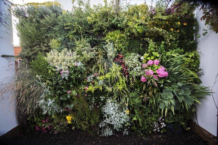 thesustainableproject Mediterranean style garden