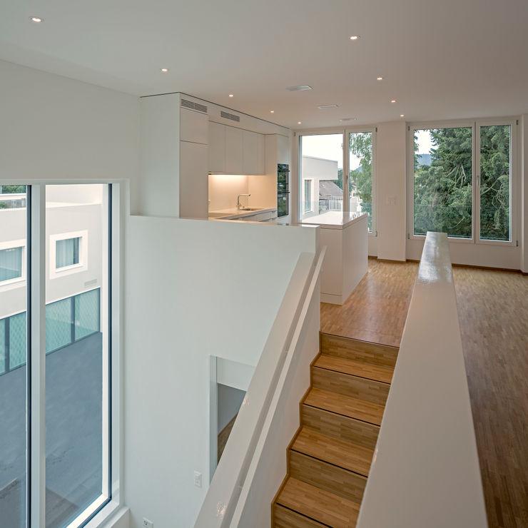 Alberati Architekten AG Modern Dining Room
