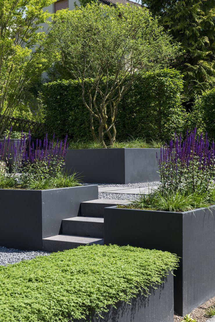 Klar und Formal GartenLandschaft Berg & Co. GmbH Moderner Garten