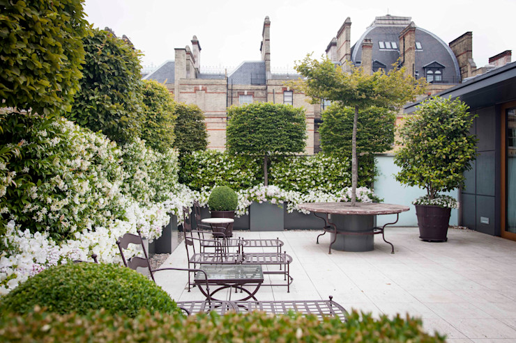 Enjoyng the city scape Cameron Landscapes and Gardens Jardines clásicos