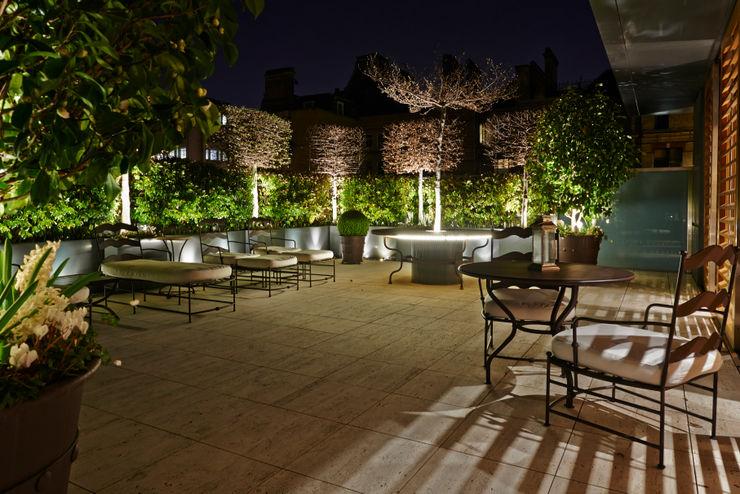 Garden lighting Cameron Landscapes and Gardens Modern Garden