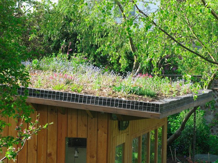 Residential green roofs Organic Roofs 모던스타일 주택