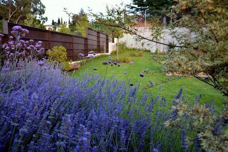 Jardín Contemporaneo La Paisajista - Jardines con Alma Jardines de estilo mediterráneo