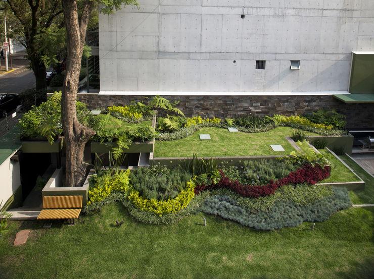 Cm2 Management Jardin moderne