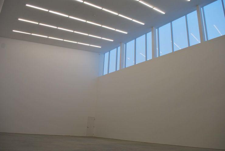 Anish Kapoor Studio Caseyfierro Architects Modern windows & doors