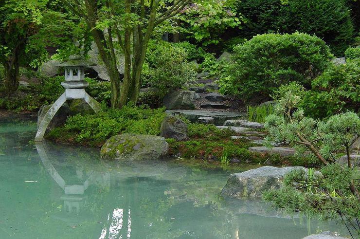 Altes im neuen Gewand Kokeniwa Japanische Gartengestaltung Asiatischer Garten