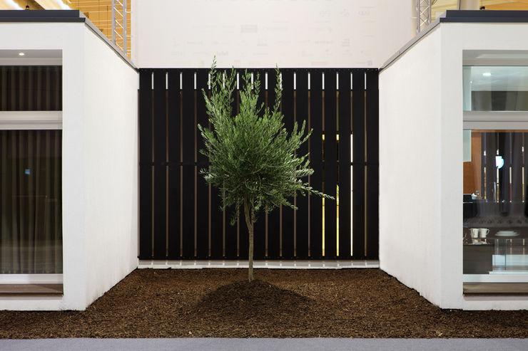 Tiago Patricio Rodrigues, Arquitectura e Interiores Casas de estilo moderno