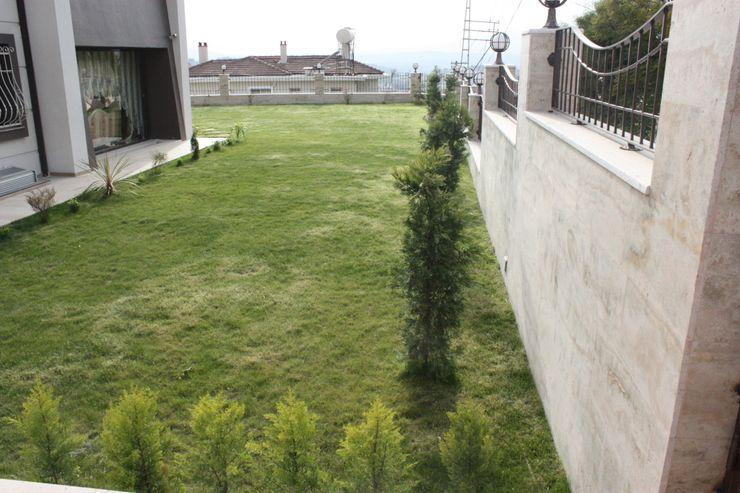 AYAYAPITASARIM Garden Plants & flowers