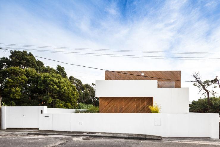SilverWoodHouse Joao Morgado - Architectural Photography モダンな 家