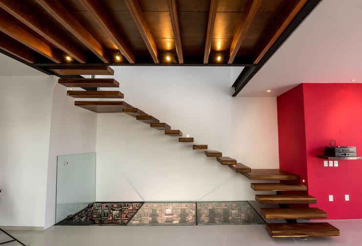 Escaleras y acceso a la cava BANG arquitectura Pasillos, vestíbulos y escaleras modernos