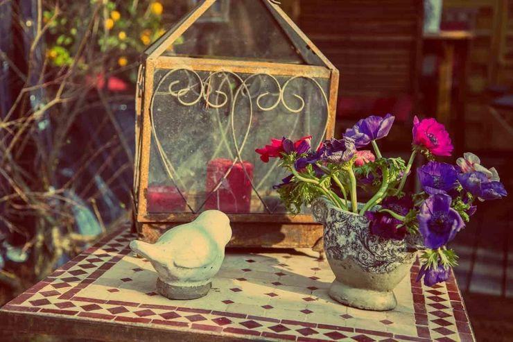 Maurine Tric Garden Plant pots & vases